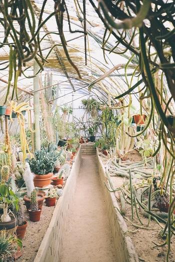 Urban Gardening Anleitung Bild mittig-oben