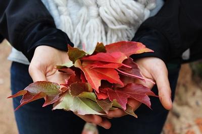 Wie man eine Herbstdepression vermeiden kann Anleitung Bild mittig-oben