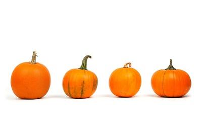 Vorteile von saisonalem Gemüse und Früchten Bild oben