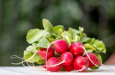 Vorteile von saisonalem Gemüse und Früchten Erfahrung Bild unten