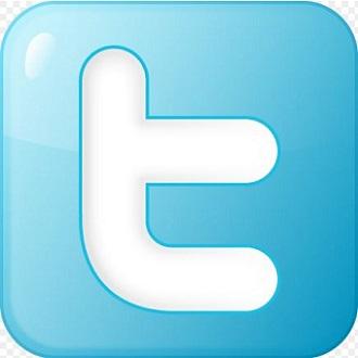 Twitter für Unternehmen Bild oben commons.wikimedia.org © David Ferreira (CC BY-SA 3.0)