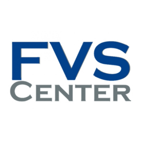 Webdesign- & Internetagentur FVS Center
