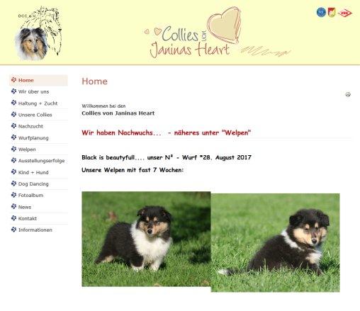 Collies Von Janinas Heart Collies Buseck
