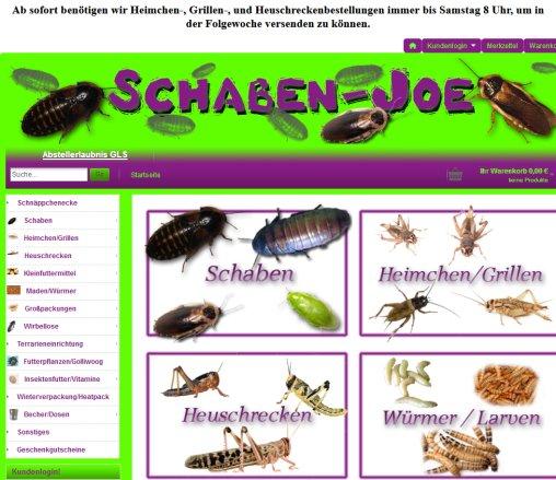 Schaben Joe Futtertiere Heimchen Feuchtwangen
